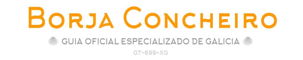 Borja Concheiro, guía oficial especializado de Galicia, tours privados en Vigo y Rías Baixas